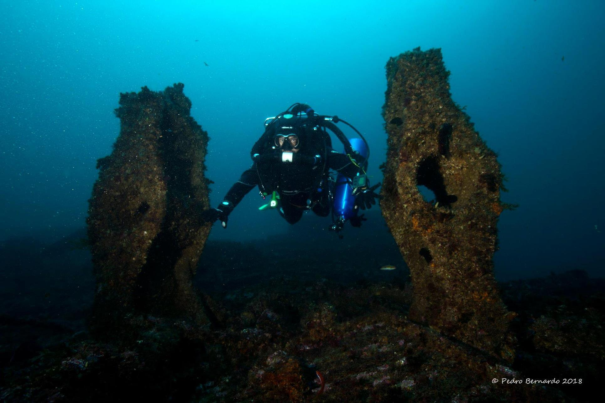 Amazing dive with friends portugal wreck 8 Copy
