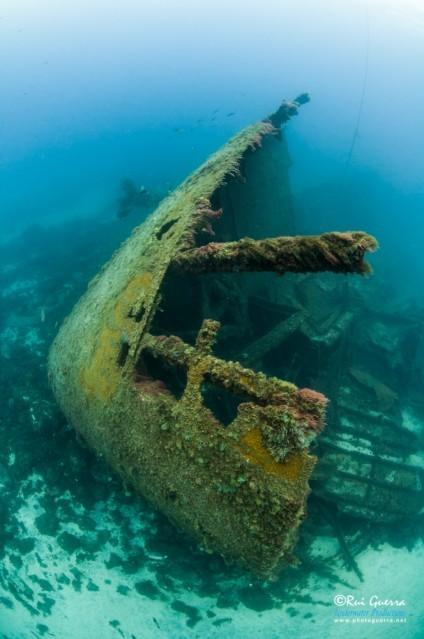 Terceirense Wreck